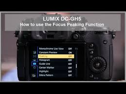 zebra pattern lumix lumix how to use focus peaking dc gh5 dc gh5s dc g9 youtube