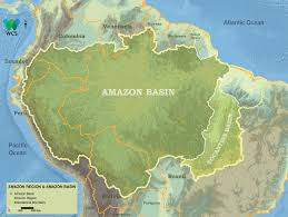Amazon River World Map by Basin Management Amazon Waters