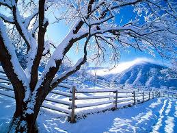 photos of snow snow pictures beautiful images of winter snow