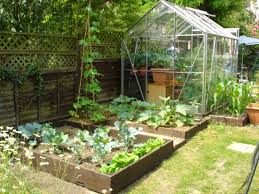 Kitchen Garden Designs Pictures Small Kitchen Garden Design Home Decorationing Ideas