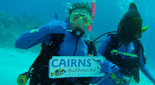 padi scuba dive courses cairns open water u0026 advanced dive course