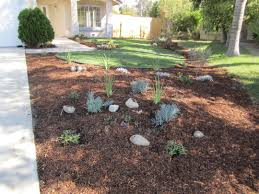 drought free landscaping beautiful drought resistant garden house