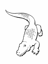 free alligators reptile coloring books for kids coloring7 com