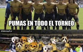 Memes Pumas Vs America - los memes humillan a pumas al perder la final vs tigres tiempo