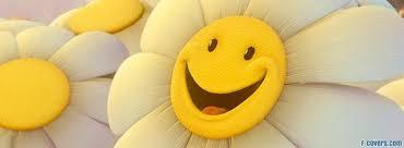 happy covers