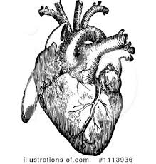 human heart clipart 1113936 illustration by prawny vintage