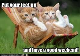 Happy Weekend Meme - have a great weekend google search happy weekends pinterest