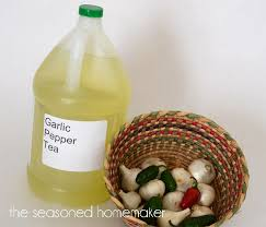 garlic pepper tea is a natural and organic pesticide