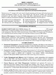 best software testing resume example livecareer templates for