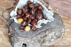 cuisiner marrons frais cuisiner les marrons frais inspiration de conception de maison