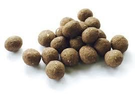 sunflower seed balls u2013 seed balls com