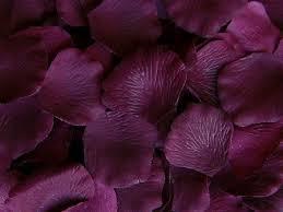 Silk Rose Petals Plum Silk Rose Petals Little Things Favors