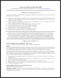 Senior It Auditor Resume Audit Template Word Masir
