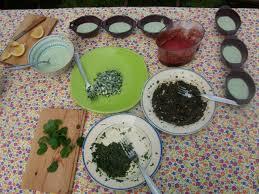 cuisine plantes sauvages morbihan nature environnement stage plantes sauvages