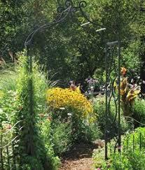 couvre si e les plantes couvre sol une alternative au gazon garden