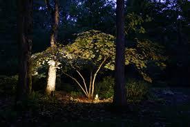 augusta tree lighting for magic and elegance outdoor lighting