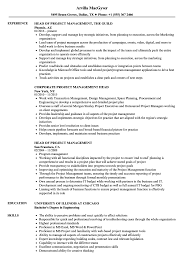 project manager resume templates resume template engineering project manager midlevel surprisingent