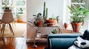 zen decor 10 ways to bring zen decor into your home life at home trulia blog