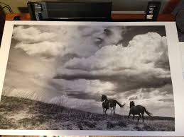 advanced printing on the epson stylus pro 3880 and surecolor p800