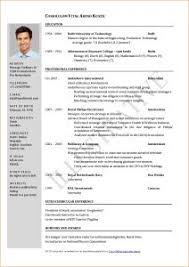 One Job Resume Examples Of Resumes 89 Enchanting Professional Resume Formats