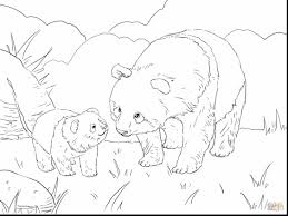 panda bear coloring pages bear coloring pages coloring of