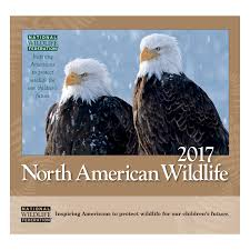 national wildlife federation cards lights