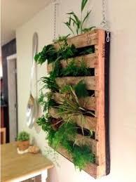 vertical indoor garden pesquisa google decor pinterest