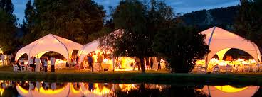 Canopy Tent Wedding by Canopy Buyer U0027s Guide Weatherport