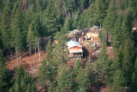Grannypad Journalist Was Eyewitness To Tragedy Nightmare Of Ruby Ridge