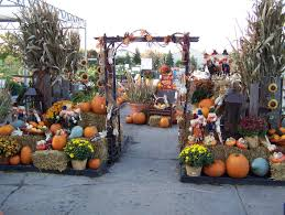 Central Point Pumpkin Patch Oregon by Over Done But I Like The Concept Store Goods Pinterest
