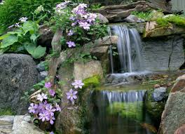 disappearing pondless waterfall contractor orlando kissimmee tampa
