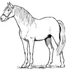 hard horse coloring pages coloring pages