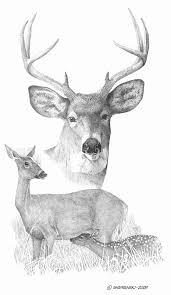 pin by lesley reeves on line art pinterest deer artwork and