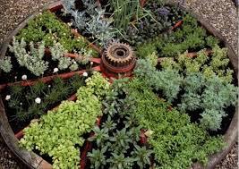 famous wagon wheel herb garden design appealing garden ideas