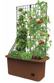 Small Trellis Planter Super Gardening Containers For Any Small Space Garden Hydrofarm