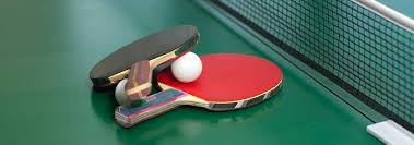 best table tennis racquet 5 best table tennis sets may 2018 bestreviews