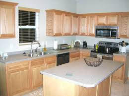 Painted Laminate Kitchen Cabinets Painting Wood Kitchen Cabinets Laminate With Trim Ideas What Color