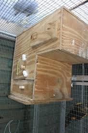 amazon black friday bird cages breeding parrots