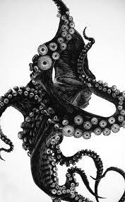 best 25 octopus illustration ideas on pinterest octopus print