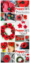 30 best remembrance day crafts images on pinterest poppy craft