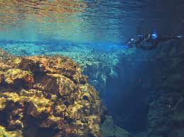 North Carolina snorkeling images What it 39 s like to snorkel between two continents jpg