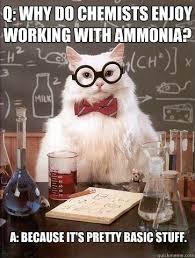 Working Cat Meme - why do chemists enjoy working cat meme cat planet cat planet