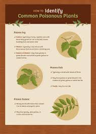 how to prevent contact with poisonous plants fix com
