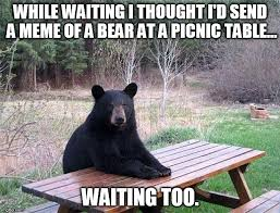 Waiting Meme - waiting bear meme generator imgflip