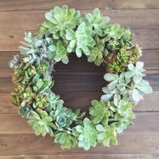 succulent wreath living wreaths arrow the
