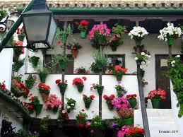 beautiful balcony other beautiful balcony white pot flowers house red background