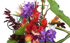 florist greenville nc flower delivery greenville nc best flower 2017