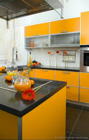 Pictures Of Modern Orange Kitchens Design Gallery - Orange kitchen cabinets