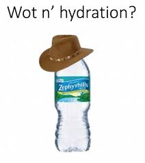 Wot Memes - dopl3r com memes wot in tarnation with hydration and a bottle