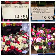 cheap bulk flowers decor coral carnations costco floral sams bulk flowers
